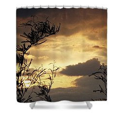 Amber Sky Shower Curtain
