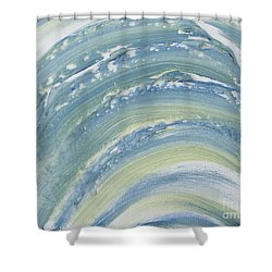 Ambiiguous Shower Curtain