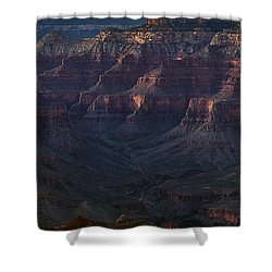 Ambitions Shower Curtain