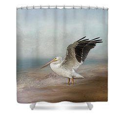 Shower Curtain featuring the photograph Amble Along The Shore by Kim Hojnacki
