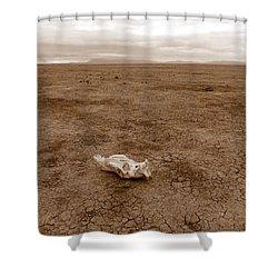 Amboseli Lake Shower Curtain