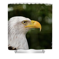 America The Great Shower Curtain