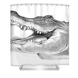 American Alligator Shower Curtain by Greg Joens