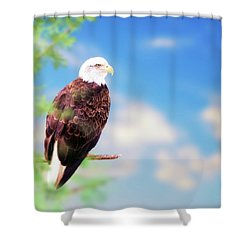 American Bald Eagle Perched On Tree Shower Curtain