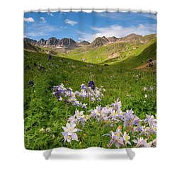 American Basin Shower Curtain