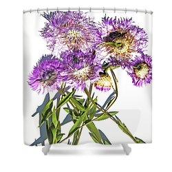 American Basket Flower Shower Curtain