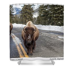 American Bison In Yellowstone National Park Shower Curtain