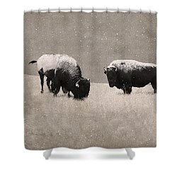 American Bison Shower Curtain by Ron Jones
