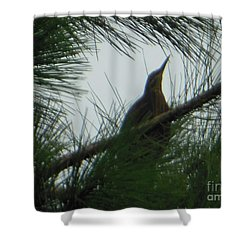 American Bitten Bird Shower Curtain