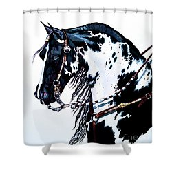 American Black And White Paint  Shower Curtain