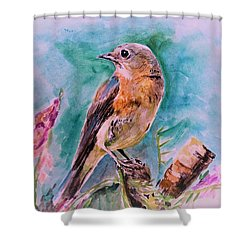 American Blue Bird Shower Curtain