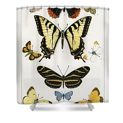American Butterflies Shower Curtain