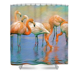 American Flamingos Shower Curtain by Brian Tarr