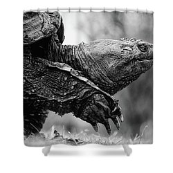 American Gamera Shower Curtain