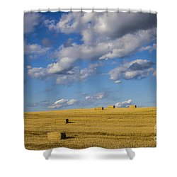 American Gold Shower Curtain