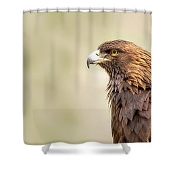 American Golden Eagle Shower Curtain