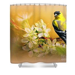 American Goldfinch In The Flowers Shower Curtain by Myrna Bradshaw