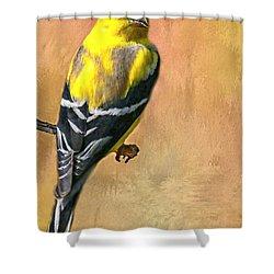 American Goldfinch Shower Curtain by Myrna Bradshaw