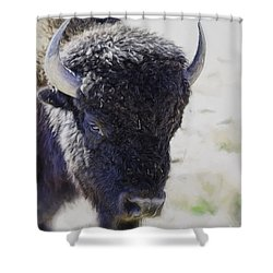 American Life  Shower Curtain