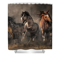 American Paint Horses Shower Curtain