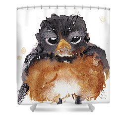 Shower Curtain featuring the painting American Robin by Dawn Derman