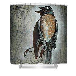 Shower Curtain featuring the mixed media American Robin by Sheri Howe