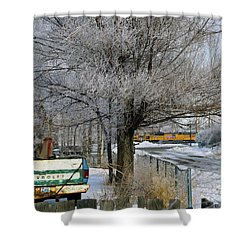 Americana And Hoarfrost Shower Curtain