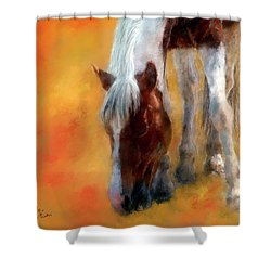 Amethyst Shower Curtain by Colleen Taylor