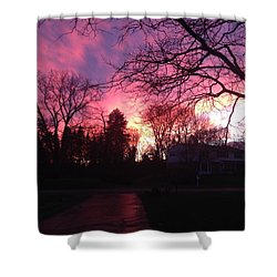 Amethyst Sunset Shower Curtain by Rebecca Wood