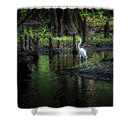 Amidst The Knees Shower Curtain