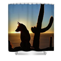 Shower Curtain featuring the photograph Amigo by Skip Hunt