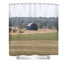 Shower Curtain featuring the photograph Amish Country 0754 by Michael Peychich