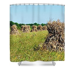 Shower Curtain featuring the photograph Amish Harvest by Cricket Hackmann