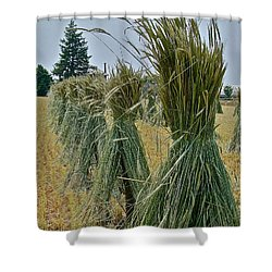 Amish Harvest Shower Curtain