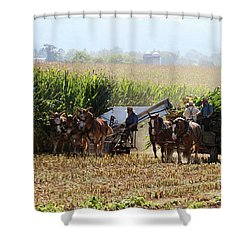 Amish Men Harvesting Corn Shower Curtain