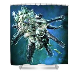 Amoeba Blue Shower Curtain by Russell Kightley