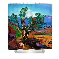 Among The Red Rocks - Sedona Shower Curtain