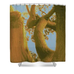 Among The Trees Shower Curtain