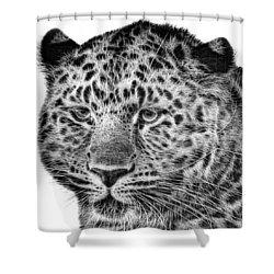 Amur Leopard Shower Curtain by John Edwards