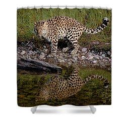 Amur Leopard Reflection Shower Curtain