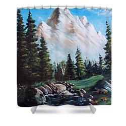 An Alpine Stream Shower Curtain by Megan Walsh