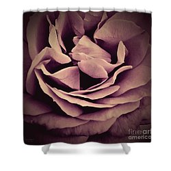 An Angel's Rose Shower Curtain by Robert ONeil