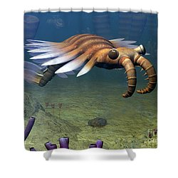An Anomalocaris Explores A Middle Shower Curtain by Walter Myers