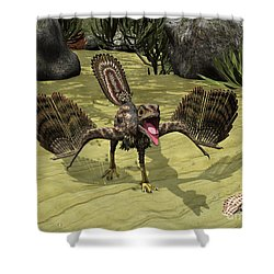 An Archaeopteryx Depicted Shower Curtain by Walter Myers