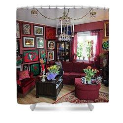 An Artists Livingroom Shower Curtain