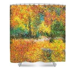 An Autumn In The Park Shower Curtain