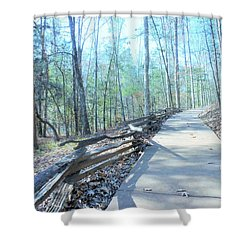 An Autumn Walk In The Woods Shower Curtain
