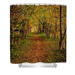 An Autumn's Walk Shower Curtain