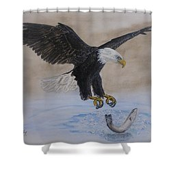 Shower Curtain featuring the painting An Eagles Easy Catch by Kelly Mills