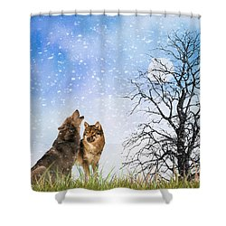 An Early Winter Howl Shower Curtain by Diane Schuster